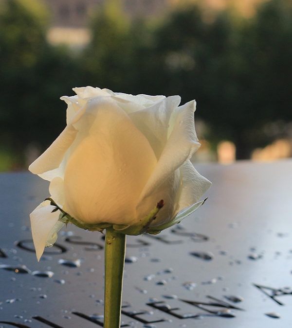 Bonifert György emlékére